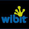 Wibit slika logo